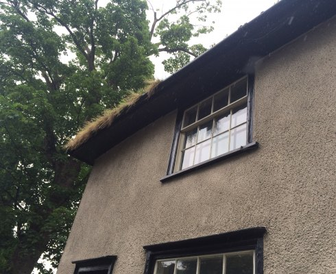 Gutter cleaning North Norfolk - house with weeds